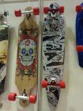 ABS / Skate Padrão PP Material PU Wheels alta qualidade CE (ET-SK2801)