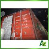 Nahrungsmittelgrad-konservierendes Natriumbenzoat granuliertes Facoty mit Halal