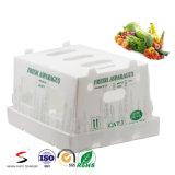Caixa plástica ondulada com a caixa de embalagem plástica impermeável de Correx para fresco