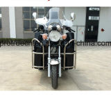 Triciclo Handicapped con comienzo eléctrico o de la mano