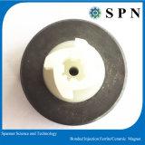 Plastikferrit-geklebter Einspritzung-Magnet für Motor