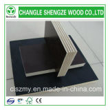 18mm Black Film Faced Shuttering Plywood