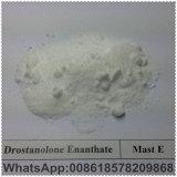 Polvere grezza steroide calda Masteron Enanthate per il Bodybuilder 13425-31-5