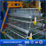 4layers 160chickens Geflügel Egg Schicht-Rahmen mit Fabrik-Preis