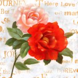 Vrij Tot bloei komend Bloemen Met de hand gemaakt Olieverfschilderij
