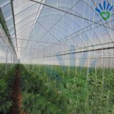 Dekking van de Installatie van de Landbouw van pp de Niet-geweven met de UVDekking van de Tuin van de Behandeling