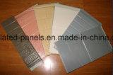El panel de pared aislado incombustible de emparedado de la venta directa de la fábrica