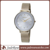 Da promoção do relógio relógio de forma do relógio de senhoras simplesmente (RS1131)