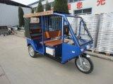 대중적인 60V 1000W 택시 전기 차량