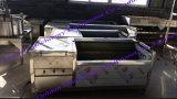 Tipo industrial máquina da escova de China de casca de lavagem do vegetal de raiz