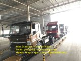 Sinotruk HOWO 4X2 camion del carico da 7 tonnellate con Cummins Engine