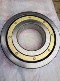 Rolamento de rolo cilíndrico padrão do rolamento de rolo Nup306