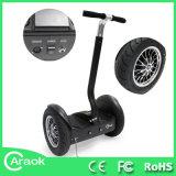 Intelligenter Chariot-elektrischer Roller Ca1500b