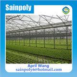 農業のための低価格のトマトの温室