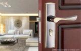 자물쇠, 실내 자물쇠, 문에 박은 자물쇠, Ms1008