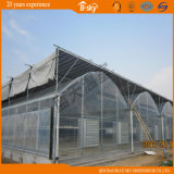 PO Film Greenhouse mit Seeding Bed