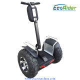 Double système de batterie Two Wheeler Scooter Cheap Segwey Preis