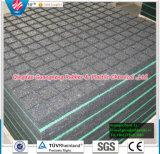 25mmの厚さの正方形の体操のマットをかみ合わせるゴム製床タイル