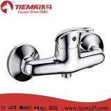 Стильный однорычажный Faucet ливня (ZS53402A)