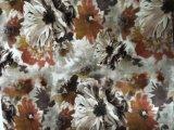 Velours de tricotage estampé/tissu estampé de sofa