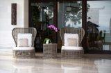 Fornitore stabilito di alta qualità dei materiali del sofà esterno moderno del rattan