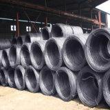 건축재료 철강선 로드 (SAE1006 SAE1008)