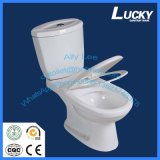 Oblongs économiques lavent vers le bas la toilette en céramique en deux pièces affleurante