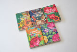 Professional Cheap Good Quality Board Book Printing