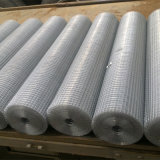Покрынная PVC сваренная стальная ячеистая сеть