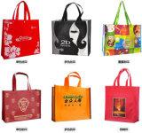 I pp Premium hanno laminato i sacchetti di acquisto non tessuti per le estetiche (FLN-9047)