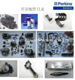 Spare Parts for Lovol Perkins Engine 1000 Series