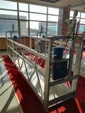 Plataforma aérea de la elevación de la paleta del trabajo de la carretilla elevadora del mejor precio