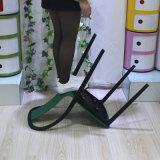 Гнездят оптовая продажа, котор обедающ стул пластмассы трактира стула