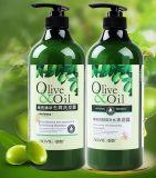 OEM de Privé Shampoo van het Haar van de Olijfolie van de Verkoop van het Etiket Hete