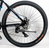 中国の電気バイクのSamsungのリチウム電池が付いている電気自転車26inchのバイク