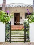 庭のアーチの錬鉄のゲートデザイン