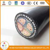 0,6 / 1kv Câble électrique / câble électrique en cuivre blindé blindé et gainé de PVC de 0,6 / 1kv