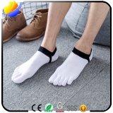 Zehe-Socken-Breathable bequeme Socken des Baumwollnormallack-fünf