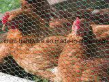 Sechseckiger Maschendraht für Huhn-Ineinander greifen