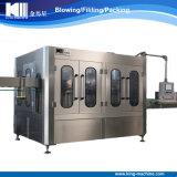 Preis-bestes komplettes Haustier abgefüllte Trinkwasser-Füllmaschine-Pflanze