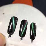 Stereokatzenauge-magnetisches Perlen-Pigment-Chamäleon-Nagel-Kunst-Puder