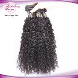 Cheveu malaisien cru de Vierge de 100% tissant le cheveu bouclé de prolonge de cheveux humains