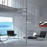 Escadaria da espiral do aço inoxidável com trilhos de vidro