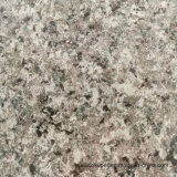 Bobina di alluminio della pittura di marmo di Diiferent usata per il pannello a sandwich