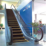 30 Grad-Einkaufszentrum-Preis-preiswerte Handelsrolltreppe