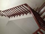 Escaleras de madera totalmente verdaderas del verde de los materiales de construcción con la certificación ISO9001