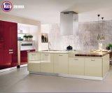 De glanzende Deuren van de Keukenkast met (aangepast) Schilderen
