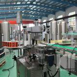 De automatische Dubbele Machine van de Etikettering van de Fles van de Sticker van Kanten