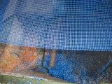 건물을%s 파란 색깔 섬유유리 메시