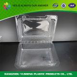 BPA 자유로운 명확한 경첩 처분할 수 있는 플라스틱 음식 콘테이너